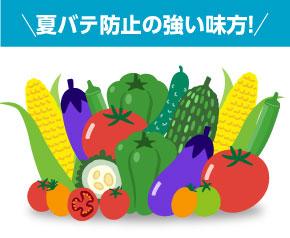 野菜で夏を乗り切ろう!JAいわて中央夏野菜セット!